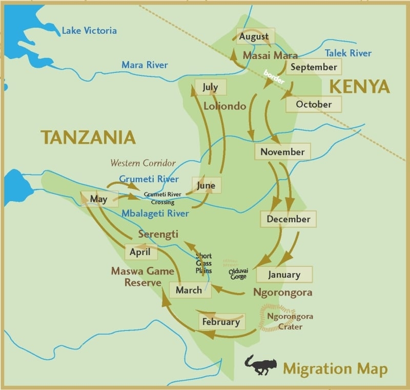 Migratie-Serengeti-map